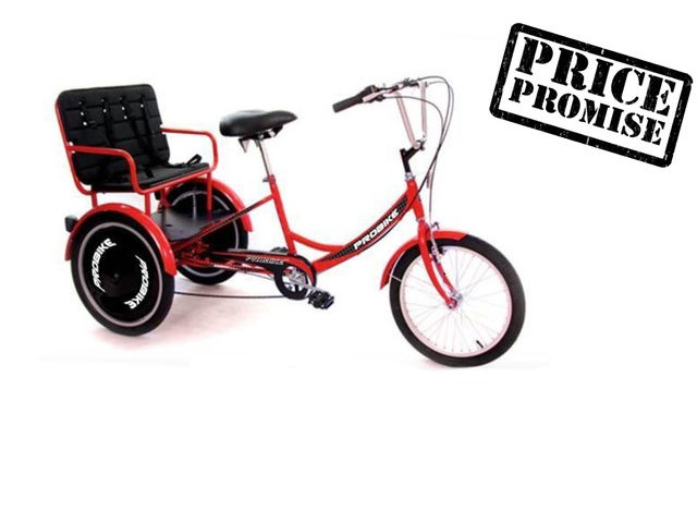 PROBIKE T-800 Child Carrier Trike click to zoom image